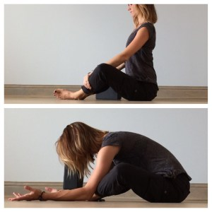 yin yoga  for the spine  nancy nelson