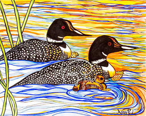 """""""NH Loons"""" Ink on Paper (2015 11x14)"""