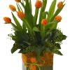 Arreglo de tulipanes naranja