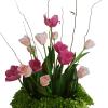 Arreglo de tulipanes rosados