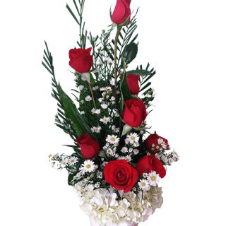 Arreglo de rosas rojas en movimiento