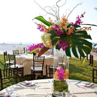 Arreglo tropical ara evento con orquídeas