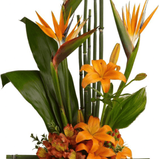 Arreglo floral tropical en base de madera