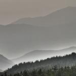 PM2.5が花粉症を悪化させる?有効な対策と飛来する時期