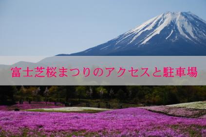 fujishibazakura01
