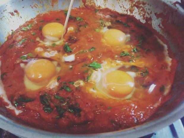 eggs poaching in tomato sauce for shakshuka