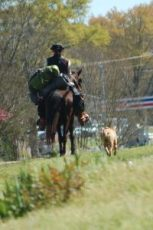 """Go east, Young Man. The Wander quoted his new Union County friends this line from one of J.R.R. Tolkien's poems: """"Not all those who wander are lost."""" And Monday horse and rider and dog headed east on old Highway 78 toward Savannah."""