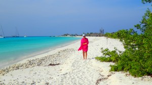 Den rosa Lotta  på den turkosa stranden