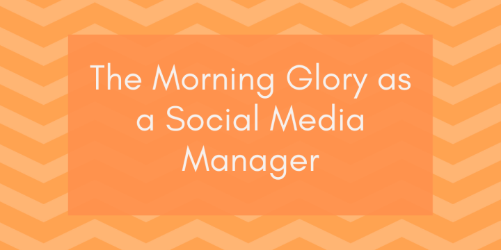 The Morning Glory As Social Media Manager