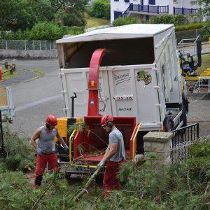 Broyage des branches en Pyrénées Atlantique 64 et Landes 40 841 - ECHEGARAY Ñaño élagage