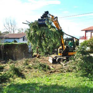 Abattage mécanique en Pyrénées Atlantique 64 et Landes 40 110 - ECHEGARAY Ñaño élagage