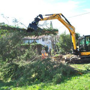 Abattage mécanique en Pyrénées Atlantique 64 et Landes 40 95 - ECHEGARAY Ñaño élagage