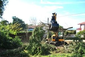 Abattage mécanique en Pyrénées Atlantique 64 et Landes 40 106 - ECHEGARAY Ñaño élagage
