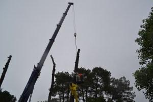 Abattage par démontage à la nacelle et grue en Pyrénées Atlantique 64 et Landes 40 991 - ECHEGARAY Ñaño élagage