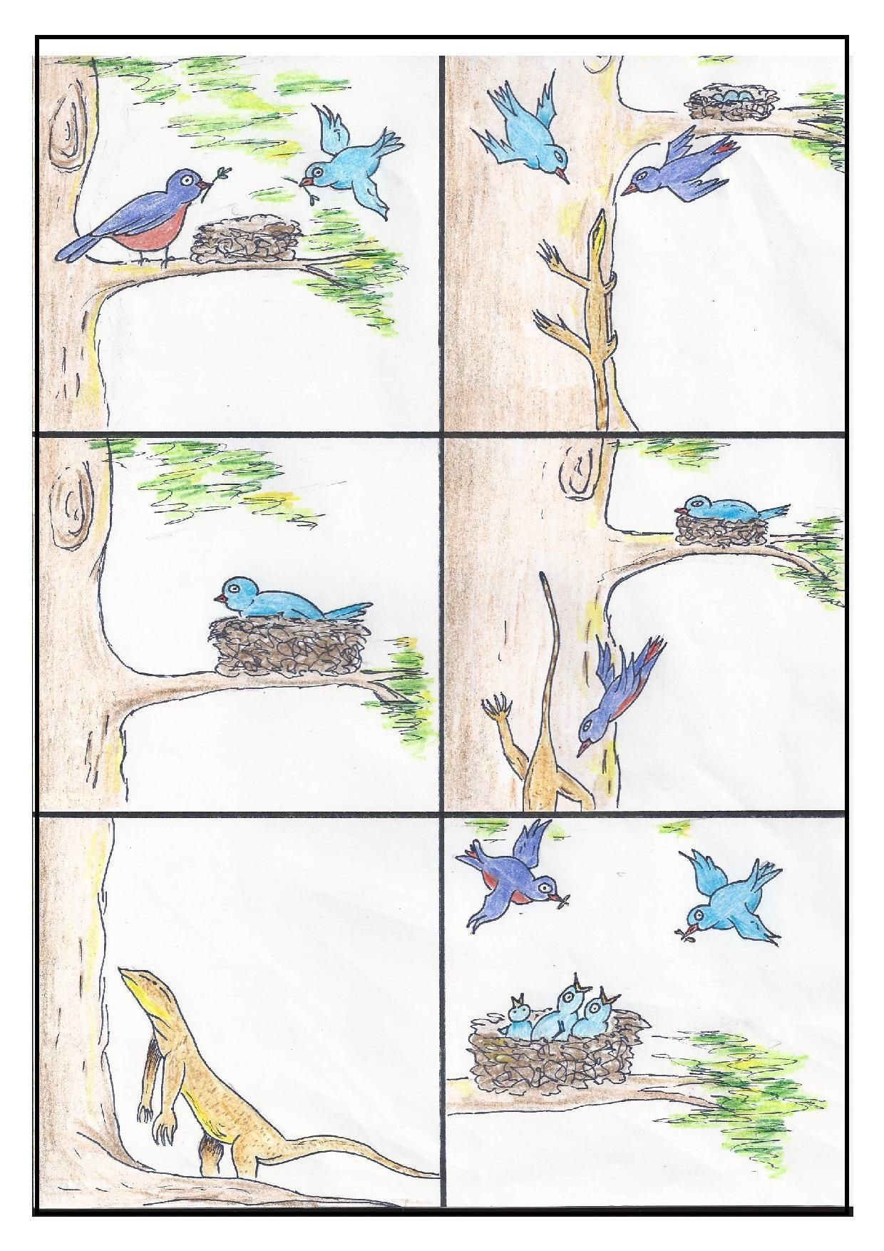 15 Best Main Idea And Detail Worksheets 2nd Grade Images