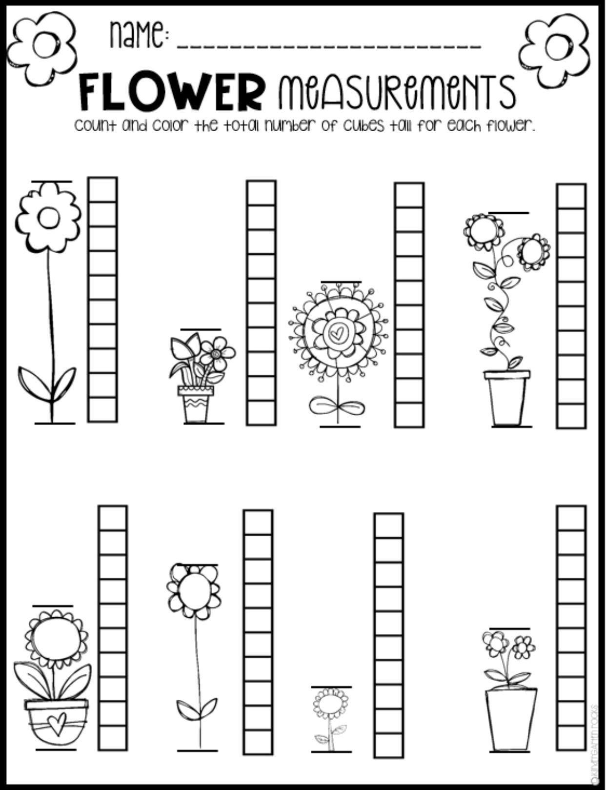 19 Best Preschool Worksheets Images On Best Worksheets