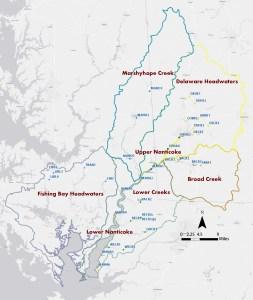 2013 Nanticoke Creekwatchers Sites