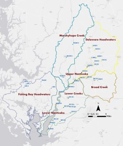 2013 Nanticoke Creekwatchers Sites