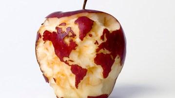 Apple globe