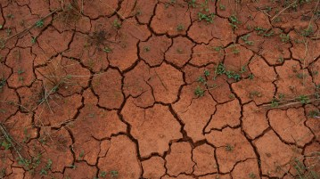 ile ground nantygreens