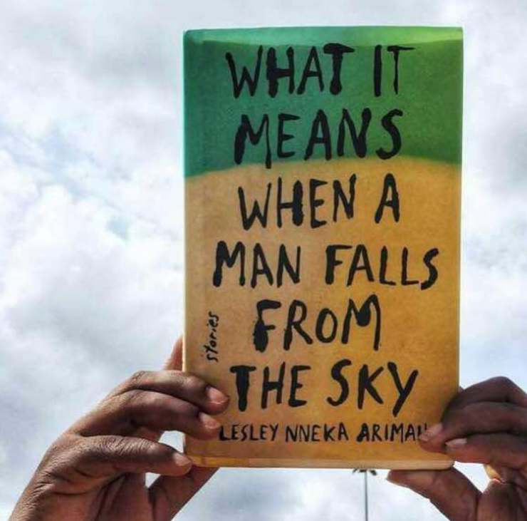 What it means when a man falls from the sky Lesley Arimah