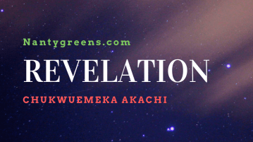 Revelation by Chukwuemeka Akachi published on Nantygreens.com