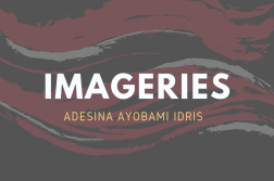 Imageries by adesina ayobami idris