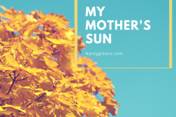 my mother's sun by tayo oladipo