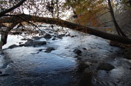 A cove of the Catawba River