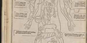 Путеводитель врача 16го века