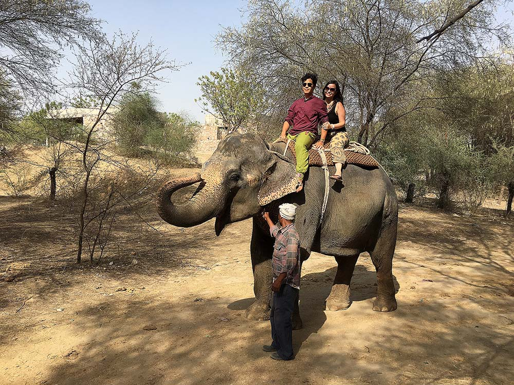 india_jaipur_elephant_village_nao_e_caro_viajar_vila_dos_elefantes_passeio