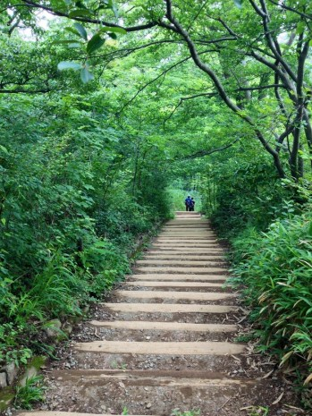 Green steps on the way down