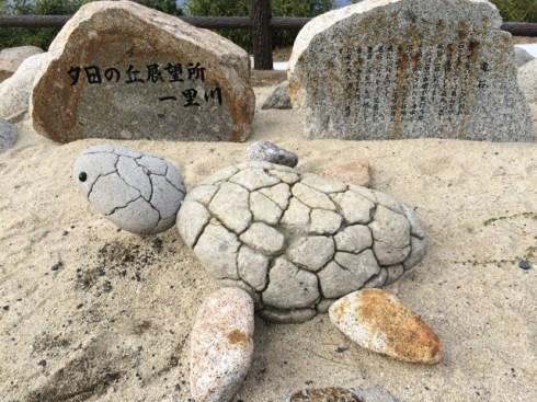 Sea turtle stone