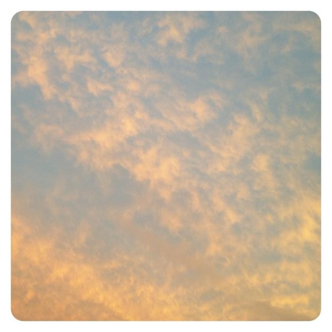 20120927-205616.jpg