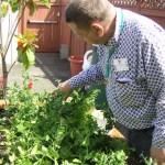 園芸療法;作業を取り上げない