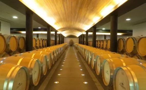 Vinícola Lapostolle – visita e degustação dos vinhos