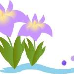 豊橋市「花しょうぶまつり」の隠れた楽しみ方4選!加茂しょうぶ園までのアクセスは?