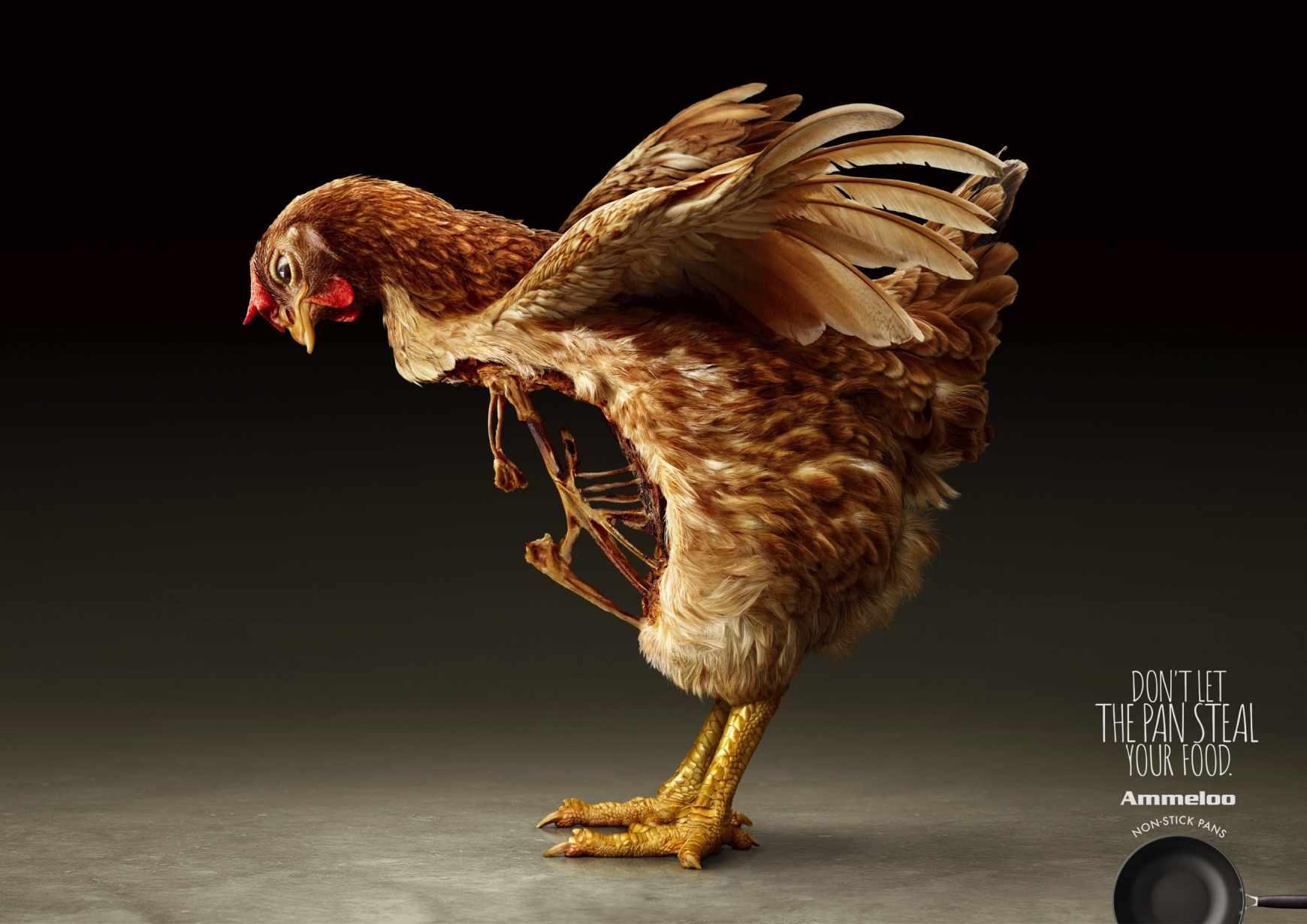 Ammeloo Print Ad - Breastless Hen