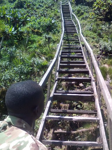 Sabinyo ladder2