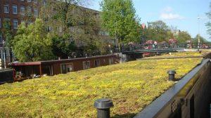 Groen dak op een woonboot op de Jacob van Lennepkade (Bron: Gemeente Amsterdam)