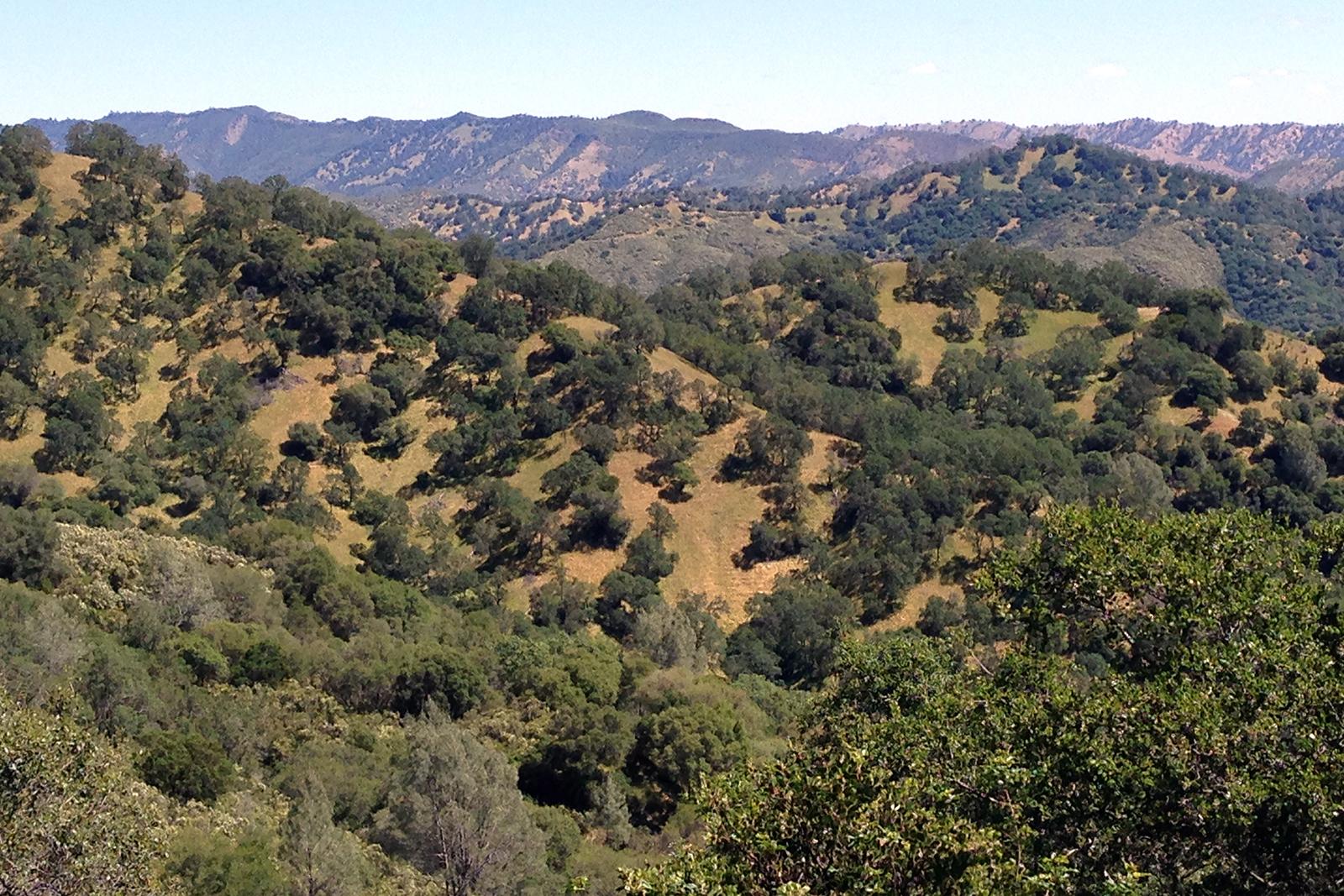 Land Trust Wragg Ridge Preserve