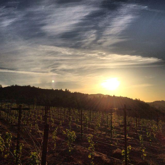 Fall sunset by Tim Carl