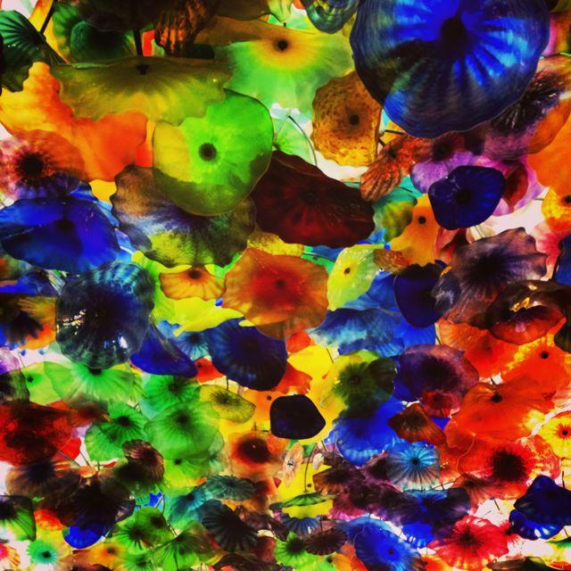 Glass Flowers by Tim Carl