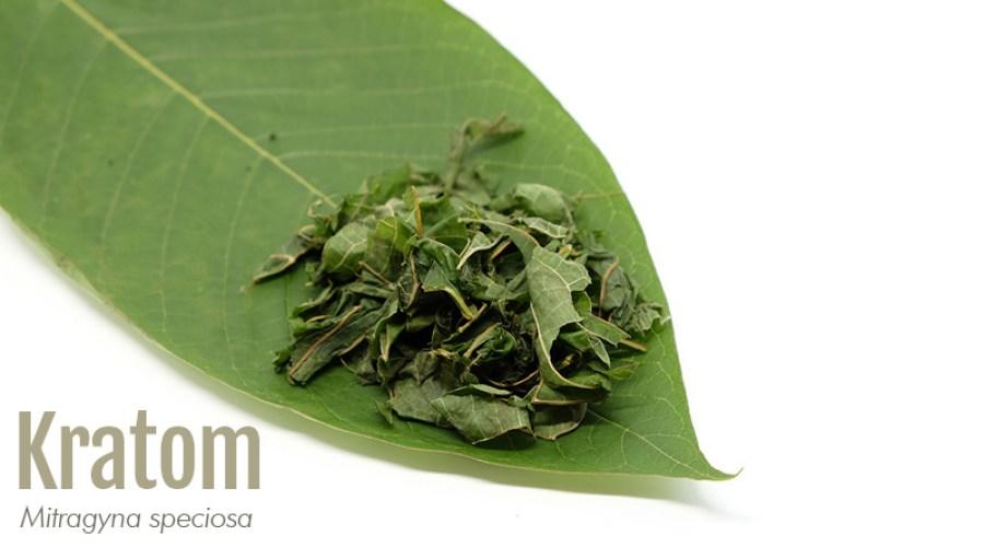 Kratom leaf with label