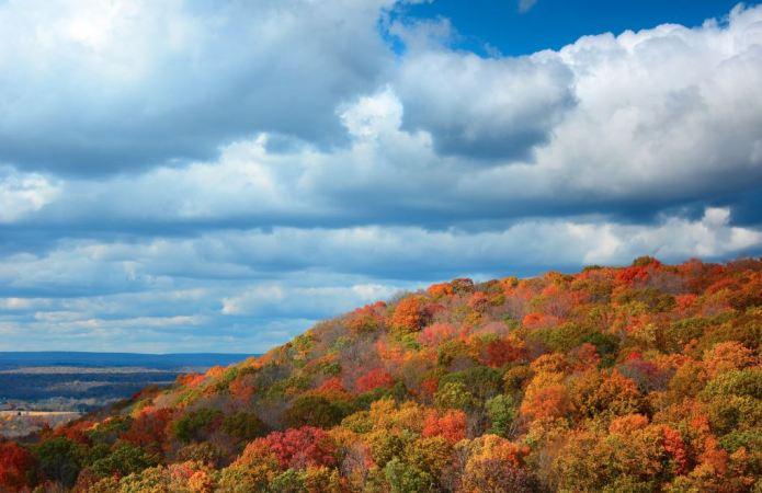 Погода в Україні на суботу, 23 жовтня: хмарна, мінлива…