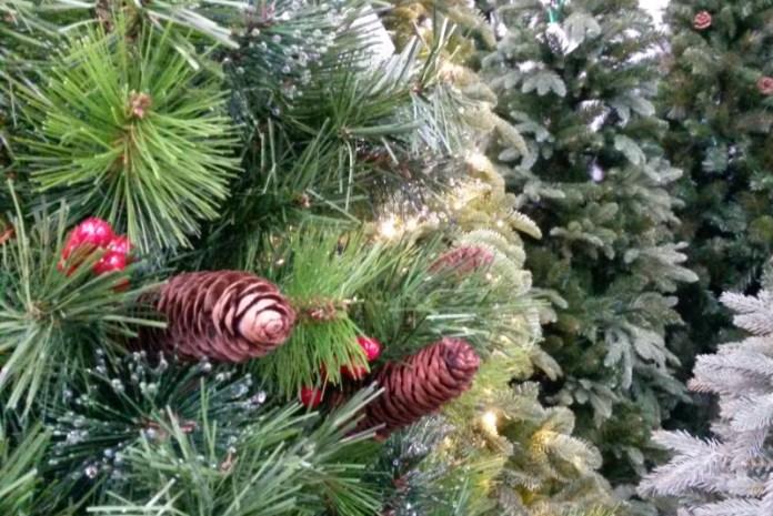 В Киеве можно сдать новогоднюю елку на утилизацию (адреса)