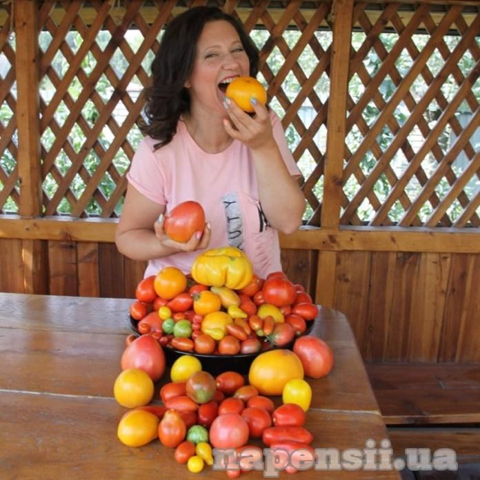 Овощевод из Тернопольской области рассказала о самых урожайных сортах томата