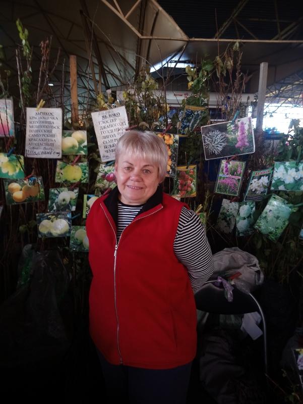 Садовод из Одесской области поделилась секретами возделывания айвы