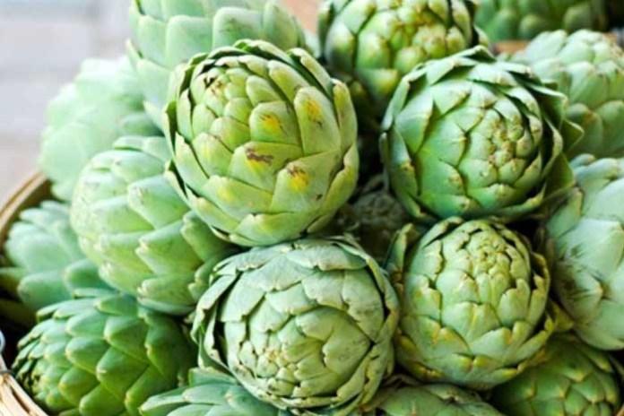 В Херсонской области выращивают редкое экзотическое растение