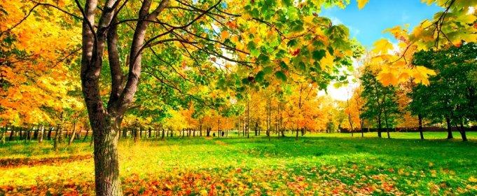 погода сентябрь